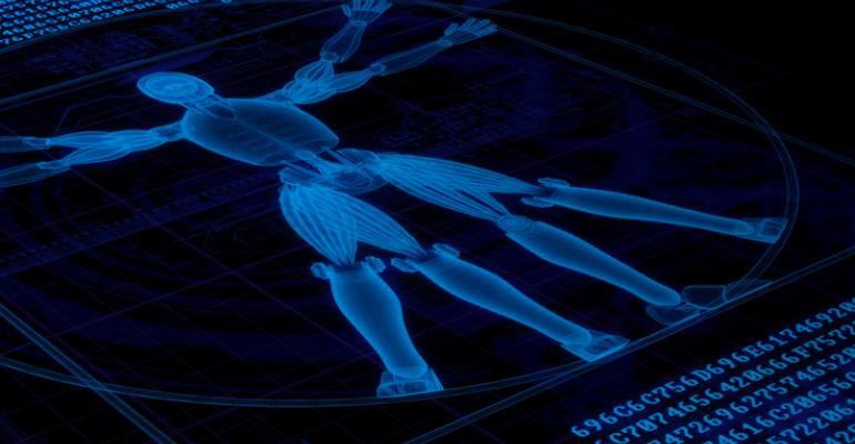 3D computer rendering of body.png