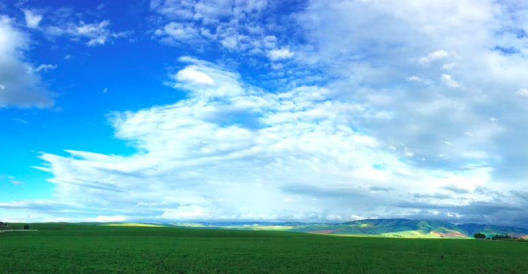 Scene resembling Windows XP home screen