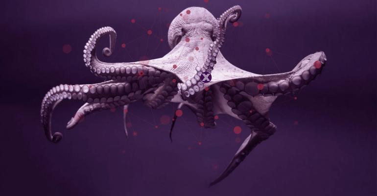 edge-x-octopus.jpg