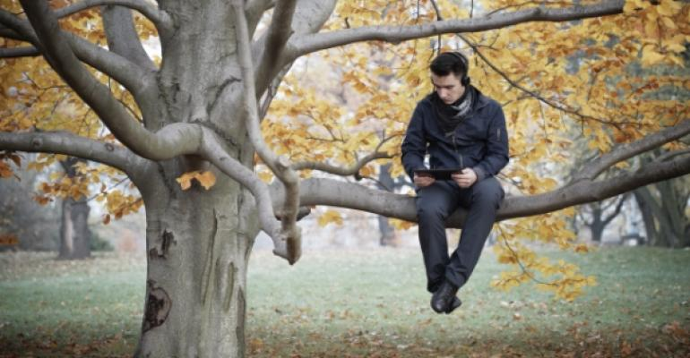 guy sitting on a low branch on a tree