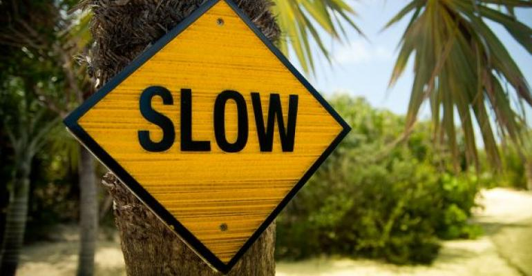 slow yellow road sign on tree in tropics