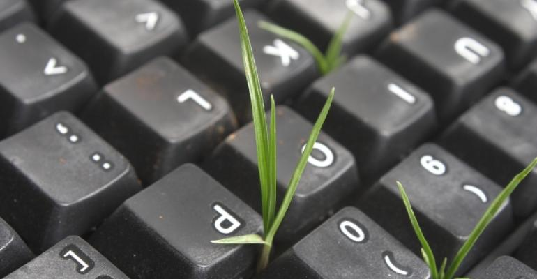 computer keyboard with green sprouts between keys
