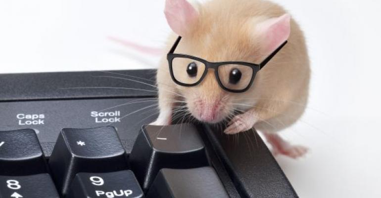 brown mouse wearing black glasses with front feet on keyboard