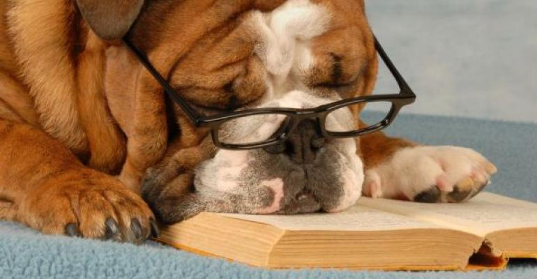 English Bulldog with glasses resting head on an open book