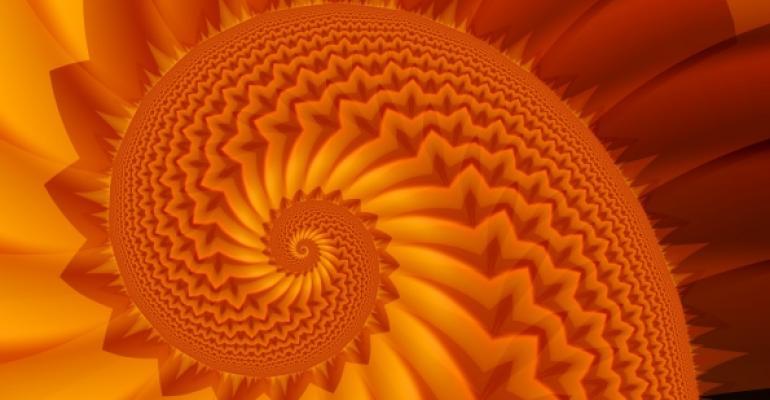 inside view of orange spiral shell