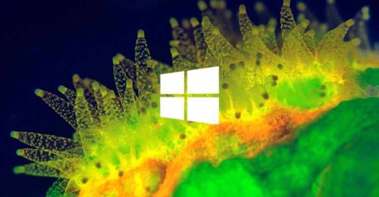 Windows 8.1 Update 1: Disk Space