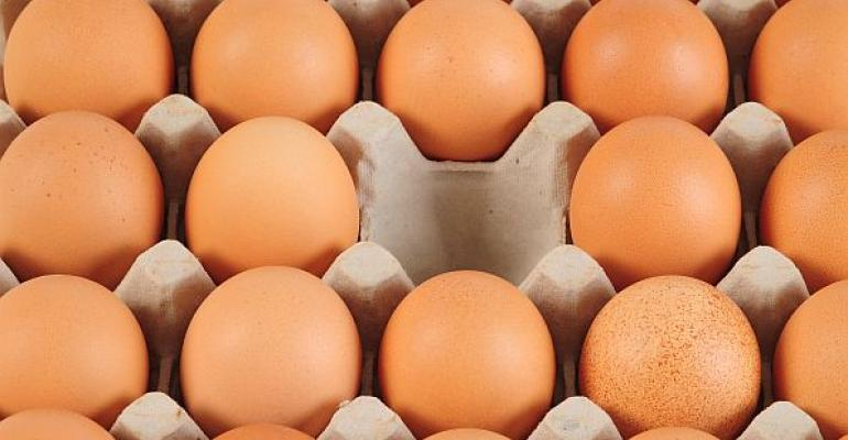 egg carton with missing brown egg
