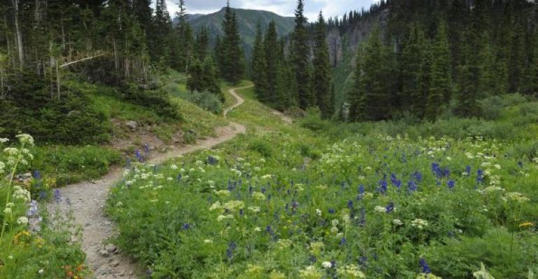 Mountain trail through Rocky Mountain National Park
