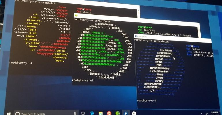 Microsoft Clarifies if Linux Distros Can Run on Windows 10 S