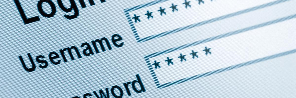 Moving Beyond Passwords to Delight and Secure Users
