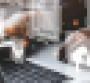 Snapt_DCK_Series_header.png