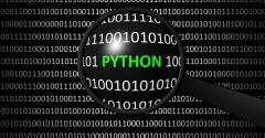 magnifying glass looking at Python amid code