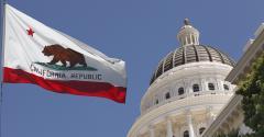 californiaflagcapitol.jpg