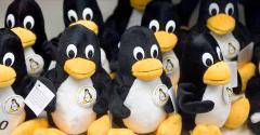 Linux penguins
