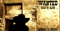 SharePoint Governance Extremes: Wild West or Fort Knox