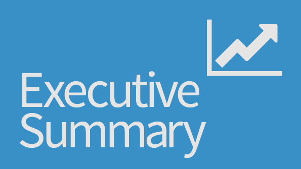 executive summary  your laptop choice and your users