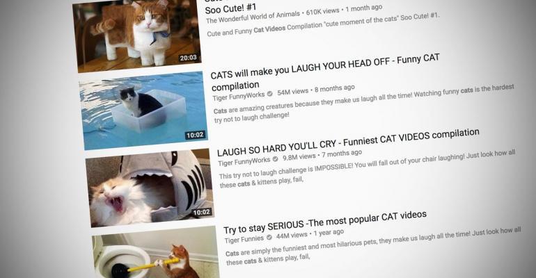 Cat videos on Youtube Website Photographer: YouTube /Bloomberg