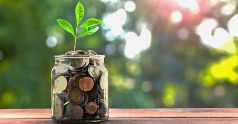 Seedling in coin jar