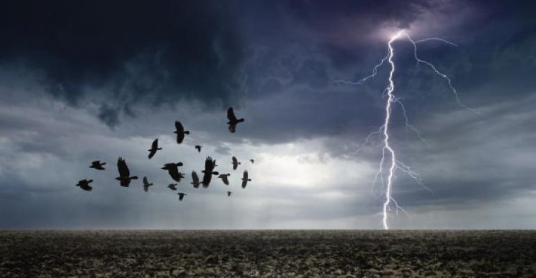 Birds flying with approaching storm and in the background