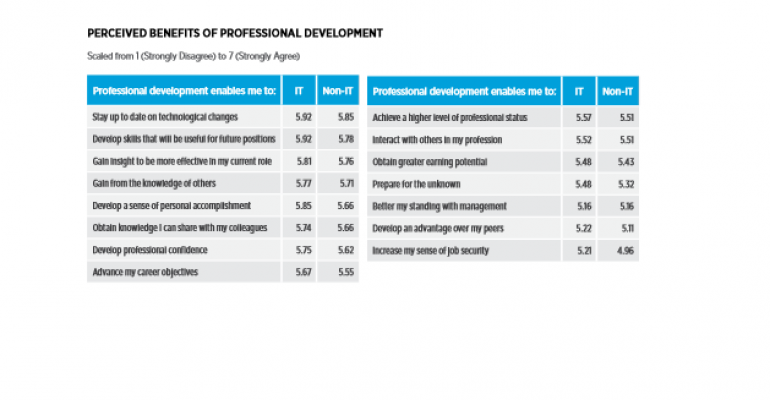 IT Pros See Professsional Development as Key to Future Success