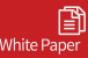 CIO eGuide: Preventing Data Breaches